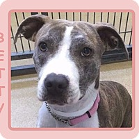 Adopt A Pet :: BETTY - Dallas, NC