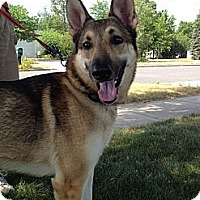 Adopt A Pet :: Liberty - Grand Rapids, MI