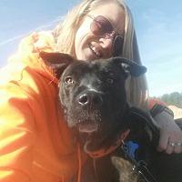 Adopt A Pet :: Sunka - Staunton, VA