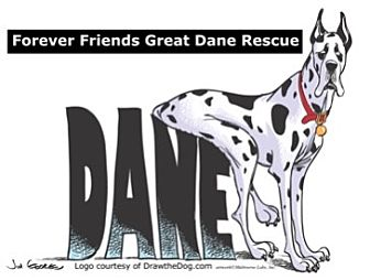 Great Dane Dog for adoption in Stevens Point, Wisconsin - FFGDR