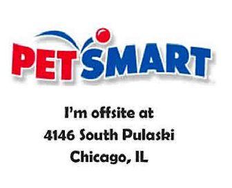 Siamese Cat for adoption in Chicago Ridge, Illinois - ATHENA