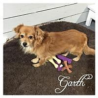 Adopt A Pet :: Garth - Hope, BC