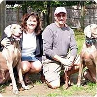 Adopt A Pet :: Buddy & Smokey - Attica, NY