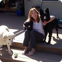 Adopt A Pet :: Elki - Sacramento, CA