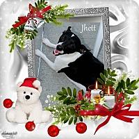 Adopt A Pet :: Jhett - Crowley, LA