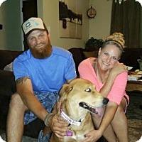 Adopt A Pet :: Winnie - Sacramento, CA