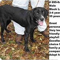 Adopt A Pet :: # 695-09 - ADOPTED! - Zanesville, OH