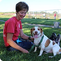 Lee County Fl Dog Rescue