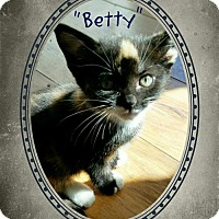 Adopt A Pet :: Betty - Seaford, DE