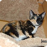 Adopt A Pet :: Jenna - Buena Park, CA
