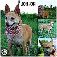 Adopt A Pet :: Jon Jon - Kimberton, PA