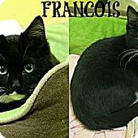 Adopt A Pet :: Francois - Mobile, AL