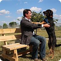 Adopt A Pet :: Indy - Elyria, OH
