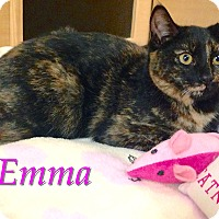 Adopt A Pet :: Emma - Foothill Ranch, CA