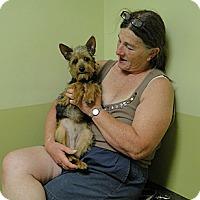 Adopt A Pet :: Mason - Columbus, IN