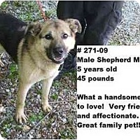Adopt A Pet :: # 271-09 - ADOPTED! - Zanesville, OH