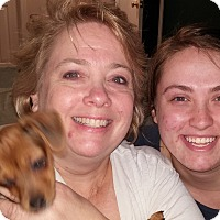 Adopt A Pet :: Lila (Lilly) - Plain City, OH