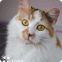 Adopt A Pet :: Kristina - Merrifield, VA