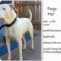 Adopt A Pet :: Fargo - Lakeville, MN
