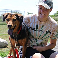 Adopt A Pet :: Antony - Elyria, OH