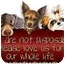 Photo 3 - Shepherd (Unknown Type) Mix Dog for adoption in Zanesville, Ohio - # 589-10 @ Animal Shelter