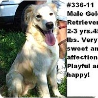 Adopt A Pet :: # 336-11 - RESCUED! - Zanesville, OH