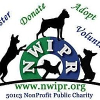 Adopt A Pet :: **FOSTERS NEEDED** - Lynnwood, WA