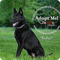Adopt A Pet :: Rufus - Montgomery, AL