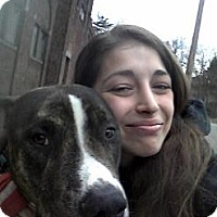 Adopt A Pet :: Remi - East Orange, NJ