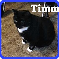 Adopt A Pet :: Timmy (Courtesy Listing) - Valley City, ND