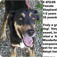 Adopt A Pet :: # 472-09 - ADOPTED! - Zanesville, OH