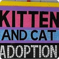 Adopt A Pet :: Open Adoption Days! - Byron Center, MI