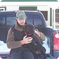 Adopt A Pet :: jill - Hollis, ME