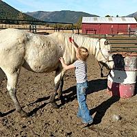 Adopt A Pet :: Tinker - Greenville, CA