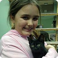 Adopt A Pet :: Ellie - Chisholm, MN
