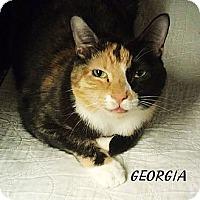Adopt A Pet :: Georgia - Fairbury, NE