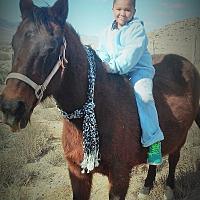 Adopt A Pet :: Mamma Justice - Salina, UT