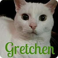 Adopt A Pet :: Gretchen - Grand Blanc, MI