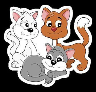 Domestic Shorthair Kitten for adoption in Winchester, California - Male Kittens