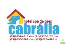 Hotel para cães e gatos cabrália salvador / lauro de freitas / bahia