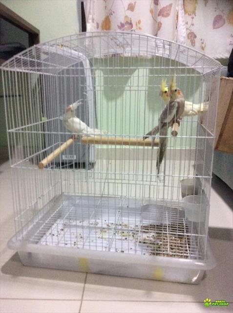 Gaiola Calopsita Triplex - Espaçosa Ideal Para 2 Ou Mais Aves.