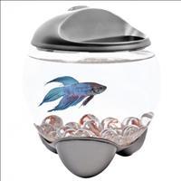 Aquario Tetra de Vidro Led Bubble para Peixes Betta