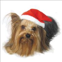 Gorro de Natal Bichinho Chic - Tam P