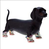Tênis Chalesco para Cães - Branco Tênis Chalesco para Cães Branco - Tam 3