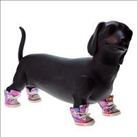 Tênis Chalesco para Cães - Rosa Tênis Chalesco para Cães Rosa - Tam 3