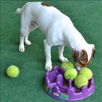 Comedouro Interativo Pet Games PetFit - Lilás