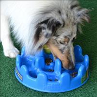 Comedouro Interativo Pet Games PetFit - Azul