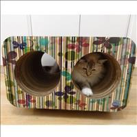 Brinquedo Arranhador Pet Games Cat Box Duplo - Borboleta
