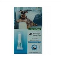 Anti Pulgas Advantage para Cães e Gatos Advantage Cães e Gatos - 1,0ml
