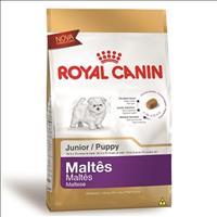 Ração Royal Canin Junior para Cães Filhotes da Raça Maltês - 1 Kg